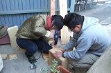 2009_0329hachimitu0015.jpg