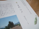 e-2008_0603kazoku0002.jpg